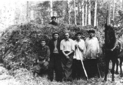 Заготовка сена в п. Ямном
