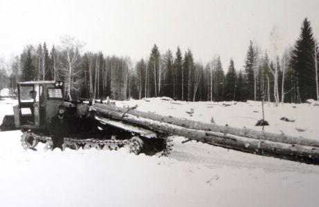 трелевка леса на переработку