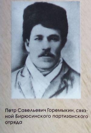 Петр Горемыкин